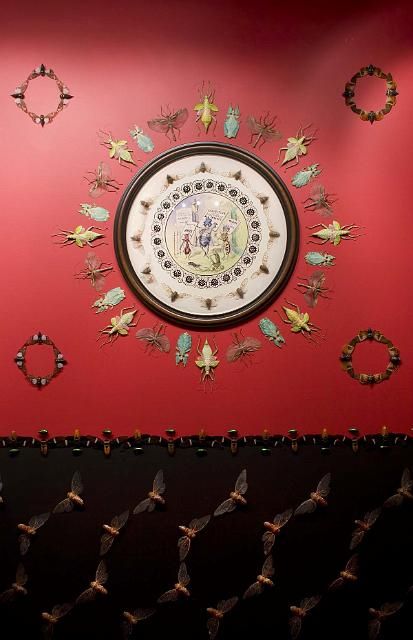 copyright, Jennifer Angus