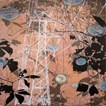 copyright, Tanja Softić